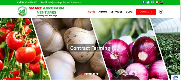 Website Design and Development in Kenya